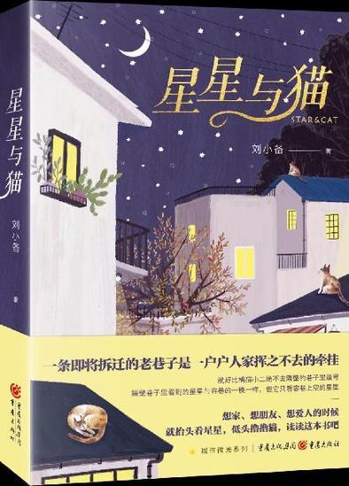 《星星与猫》:一本献给生活的书